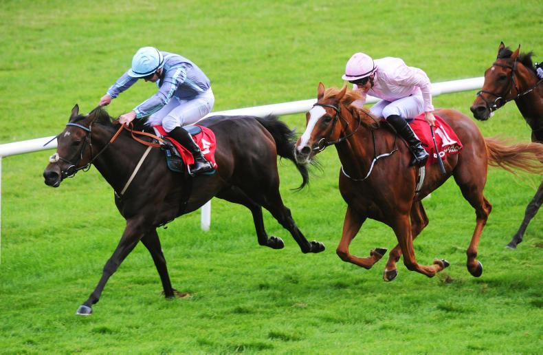 GOWRAN WEDNESDAY: Winter winner for wily Watson