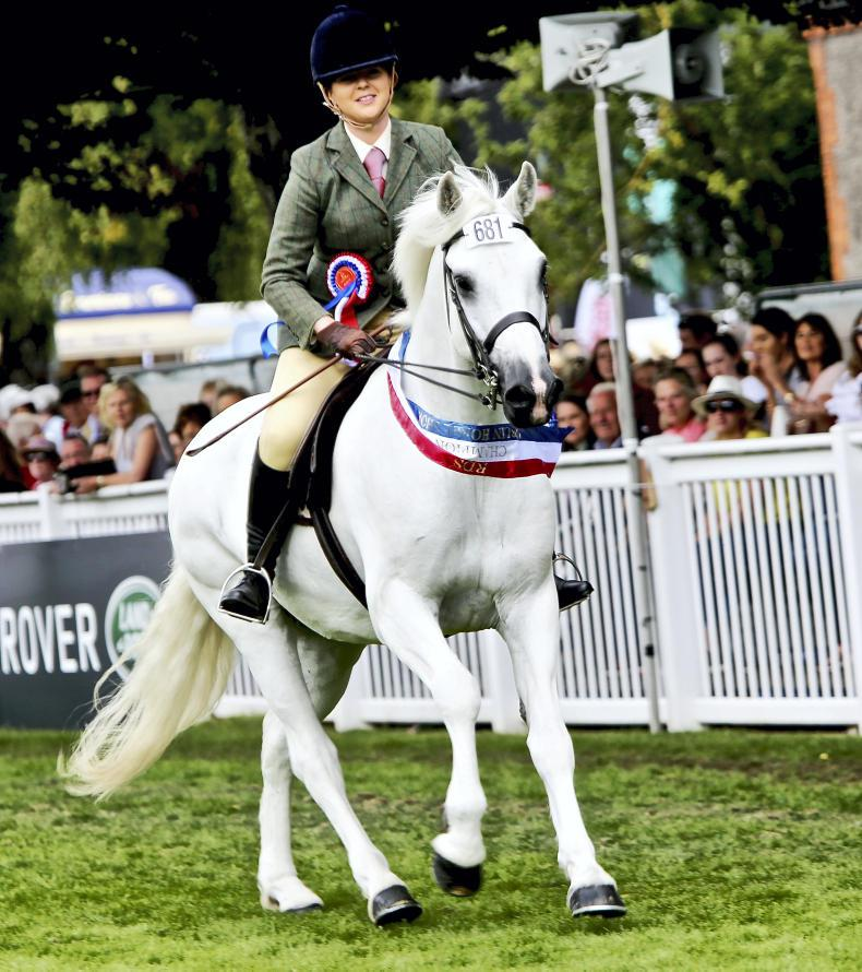 DUBLIN HORSE SHOW 2018: Dreams come true for Cleary