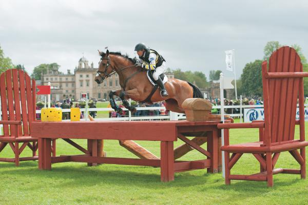 ISH studbook tops eventing rankings