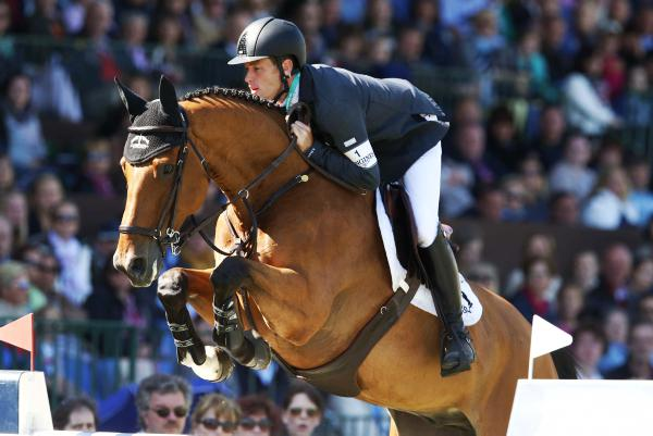 Irish Sport Horse studbook retains number one spot in world rankings