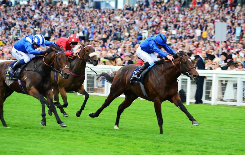 DONN McCLEAN: Believe in Blue for Battaash rematch