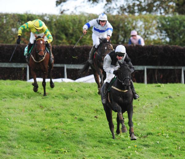 O'Connor initiates a double at Loughbrickland on 'proper horse' Kerisper