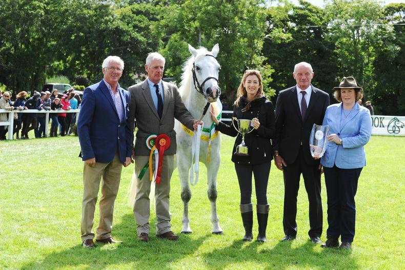 CLIFDEN SHOW 2018: Glencarrig Princess Katie gets her Clifden crown