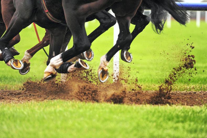 FRANCE: Holdthasigreen, the horse of a lifetime