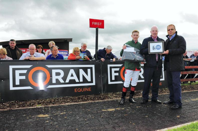 FORAN EQUINE IRISH EBF SERIES: Lyons prowling through lucrative series