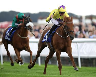 Sea Of Class cruises to Yorkshire Oaks glory