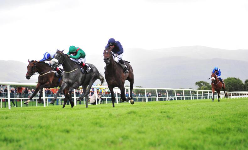 KILLARNEY THURSDAY: Zuenoon zoomed home