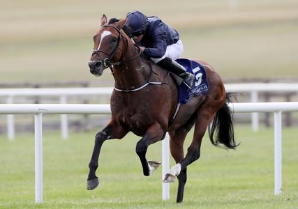 Flag Of Honour advertises Leger credentials at the Curragh