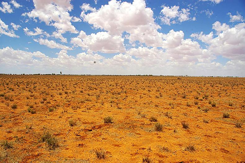Coolmore helps Australian drought crisis
