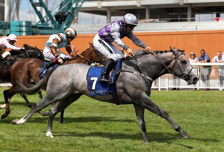 Karl Burke hands Havana Grey Flying Five target following York run