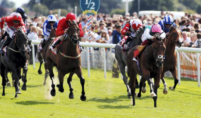BRITAIN: Stoute's Eye in to deny brilliant Byron