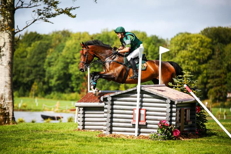 MILLSTREET HORSE TRIALS: Morrison and Smith win for Ireland