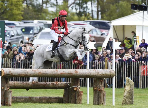 The Magnificient Six: Ireland's best event horse breeders