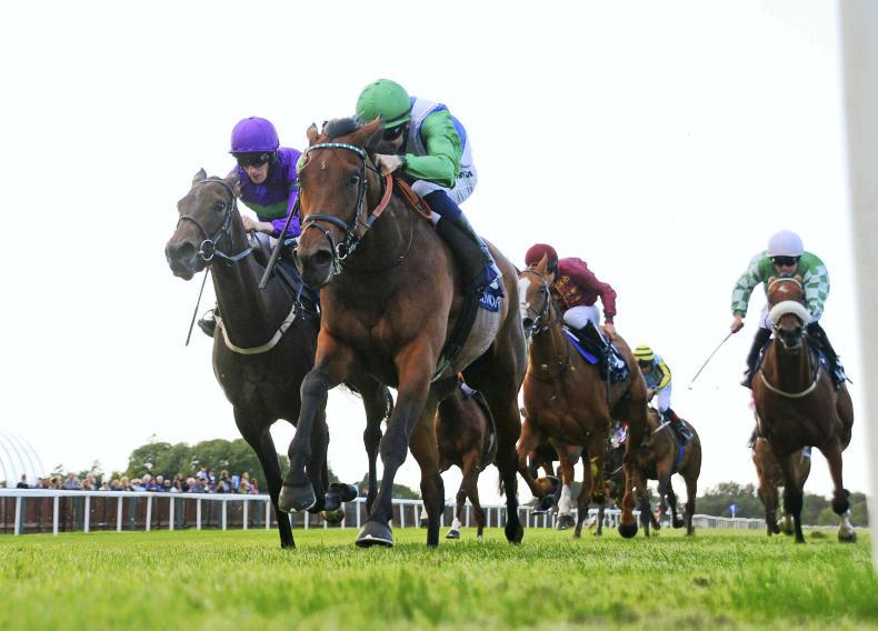 TIPPERARY THURSDAY: English raider lands feature