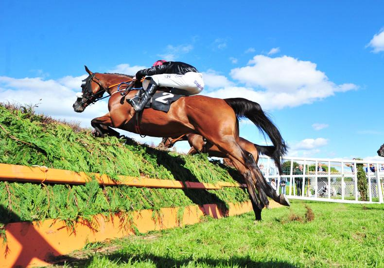 KILLARNEY SATURDAY: Peregrine Run takes the spoils
