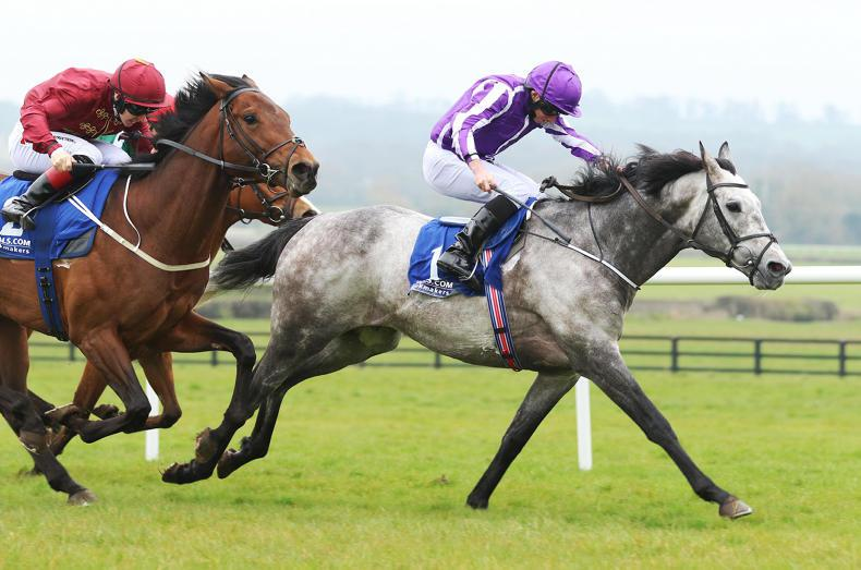 Capri on course for Prix Foy return as Aidan O'Brien mulls Arc potential