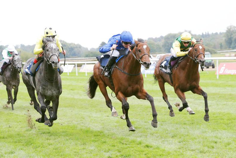 GERMANY:  Solution is Best again for Godolphin