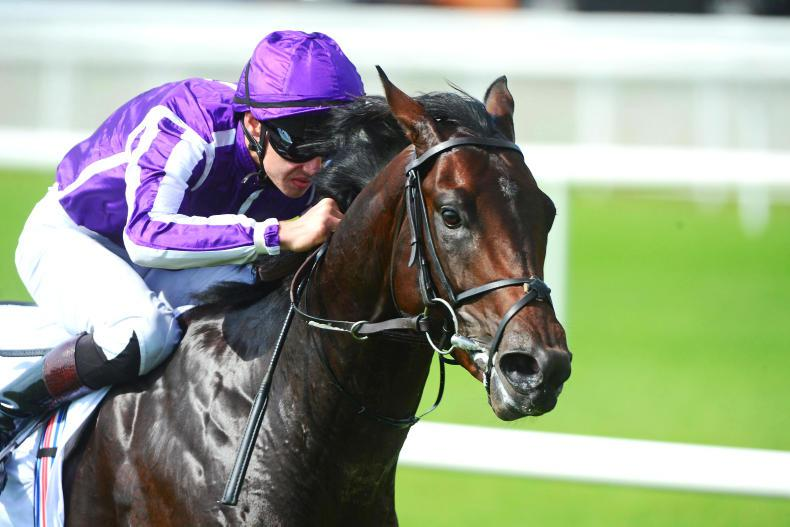 THE WEEK THAT WAS:  Sovereigns wins in naming stakes
