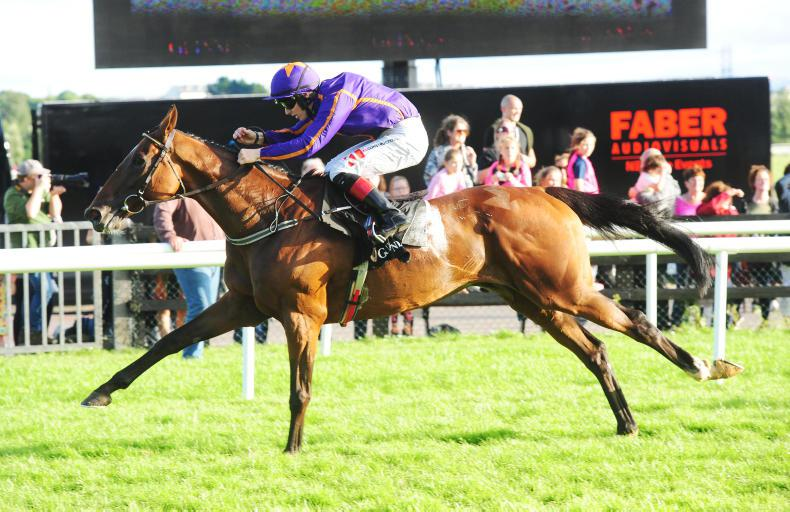 SALES: Wicklow Brave, Galileo Gold, and Lethal Force, Fairyhouse graduates