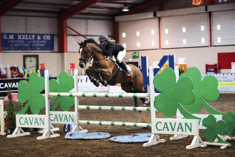 AROUND THE COUNTRY:  3,000 entries for bumper Cavan show