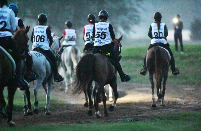 WEG 2018: Endurance race restarted after misdirection