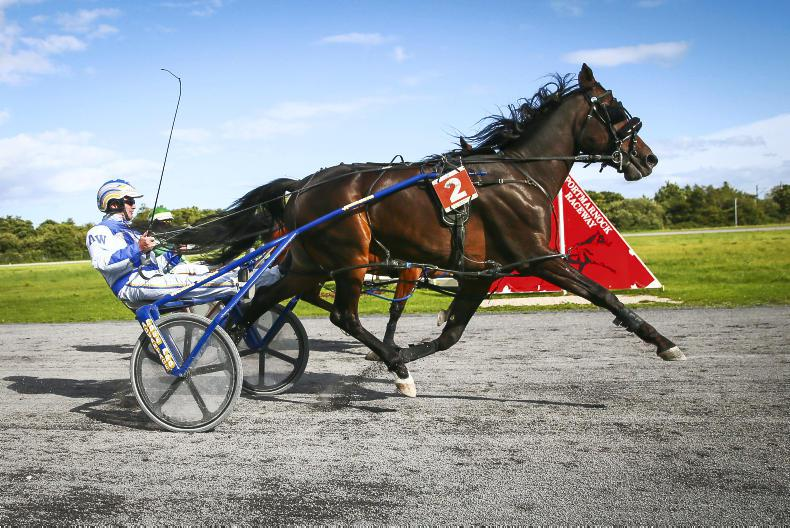 HARNESS RACING: Wallace bounces back to form