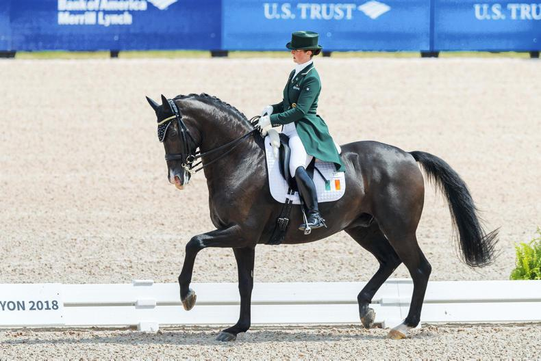 WEG 2018: Judy Reynolds makes an impressive start