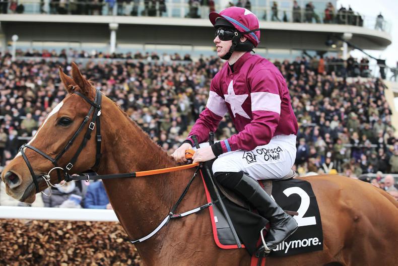 Samcro in line for Down Royal return