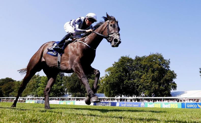 Alpha Centauri to face six in Matron test