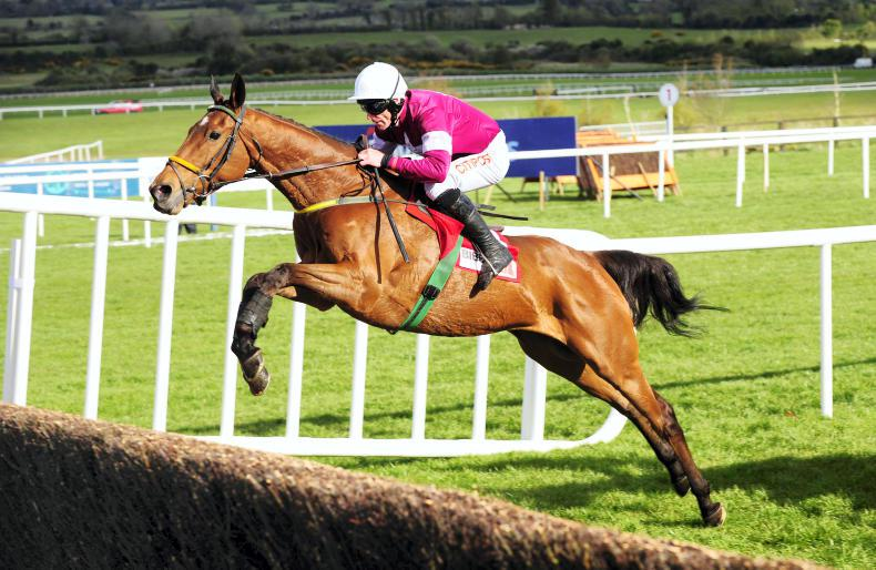 Road To Riches among 37 Gigginstown horses for sale at Doncaster