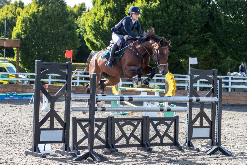 PONY CLUB: Sweet success for Sligo's O'Connor