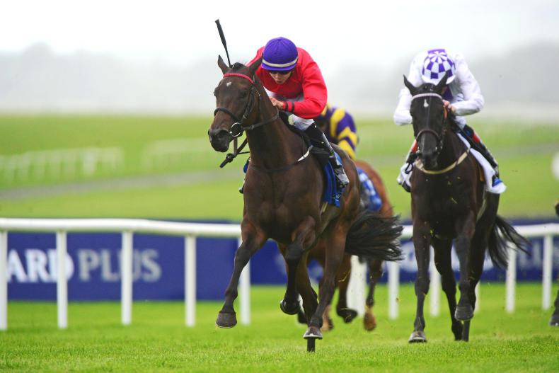 CURRAGH SUNDAY: Skitter Scatter sets the standard