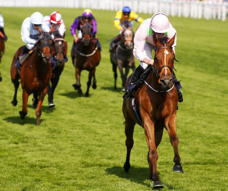 DONCASTER FRIDAY: Hobson gives Mullins Cup cheer