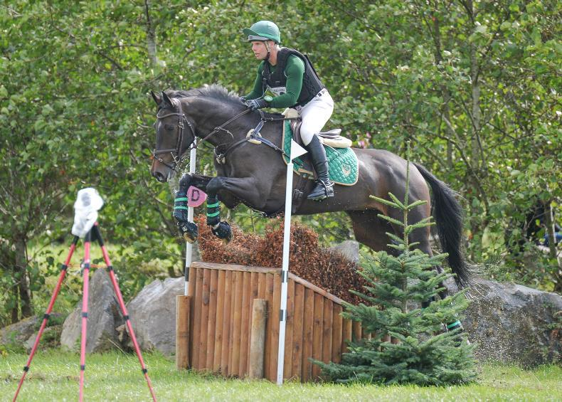 EVENTING IRELAND NATIONAL CHAMPIONSHIPS: Championship win for a beautiful horse