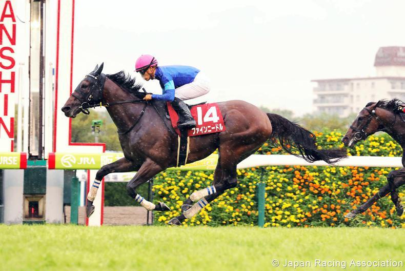 JAPAN: Fine Needle retains Centaur crown