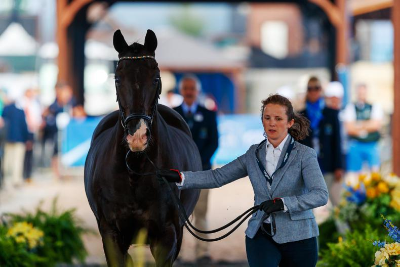 WEG BLOG: A day filled with mixed emotions