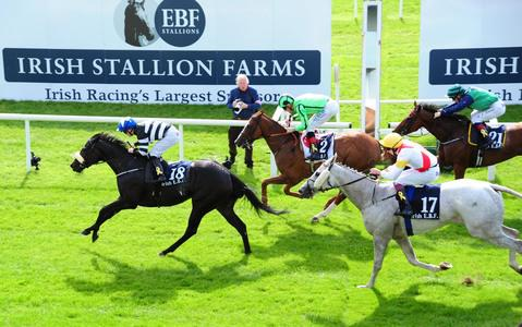 Soffia sparkles with Bold Lad success