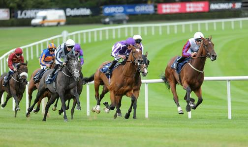 Sun Chariot looks set to be next port of call for Matron heroine Laurens