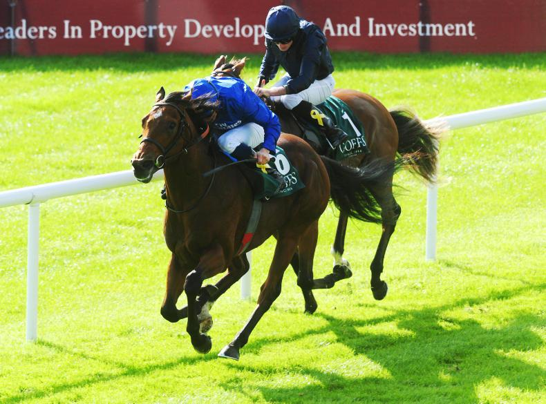 CURRAGH SUNDAY: Quorto quickens up well