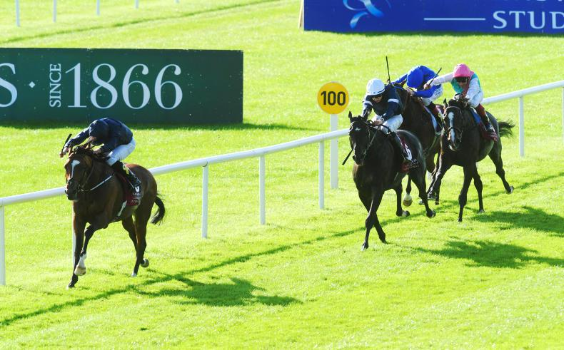 CURRAGH SUNDAY: Flag Of Honour sails home