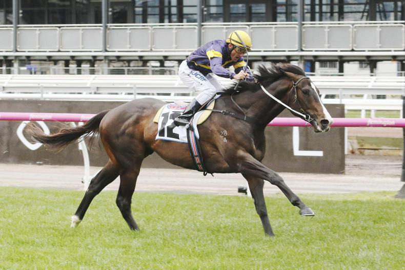 AUSTRALIA: Grunt trainer keen to follow O'Brien's line