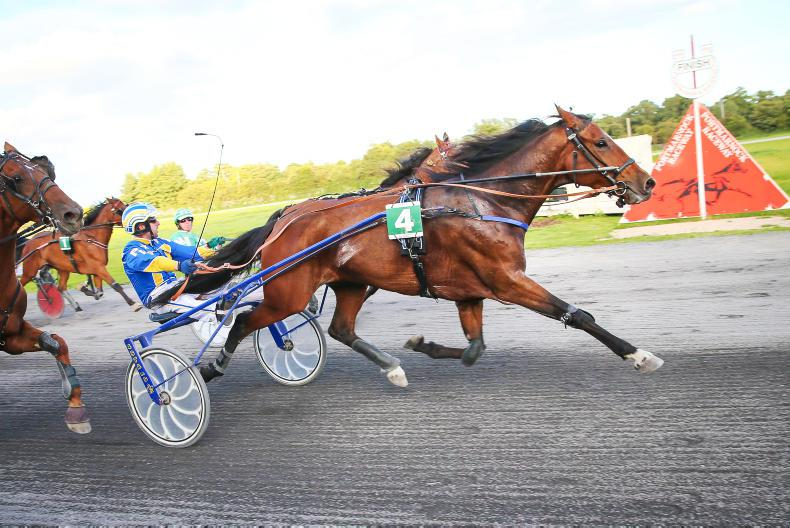 HARNESS RACING: Doubles for Gilligan and Kane