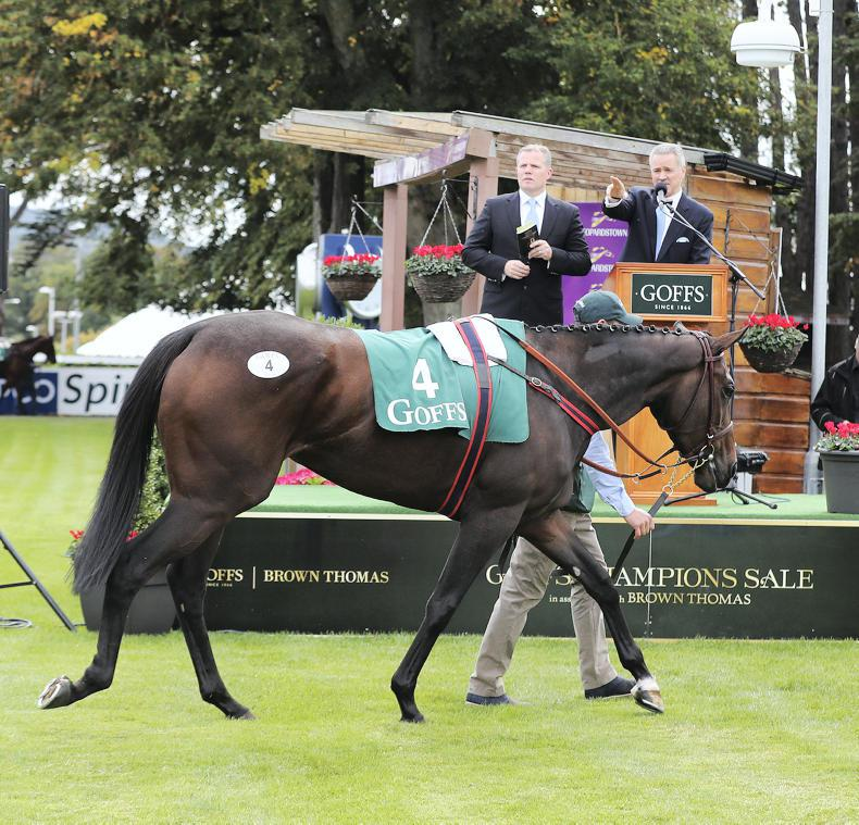 SALES: Bolger's filly sets new record at Leopardstown