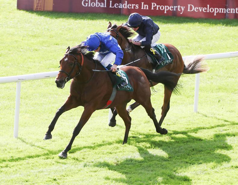 PEDIGREE ANALYSIS: Outstanding weekend for Dubawi and Galileo