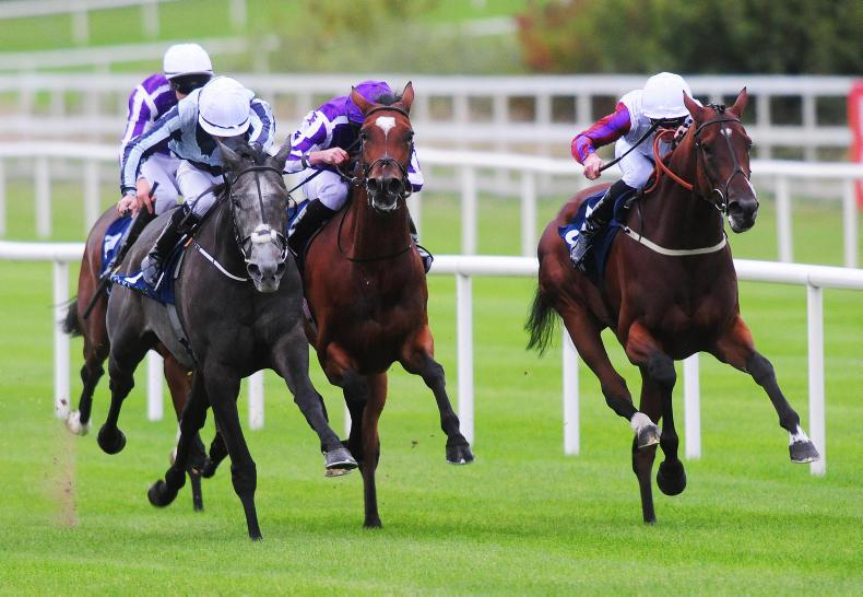LEOPARDSTOWN SATURDAY: Battling Laurens lands another big one