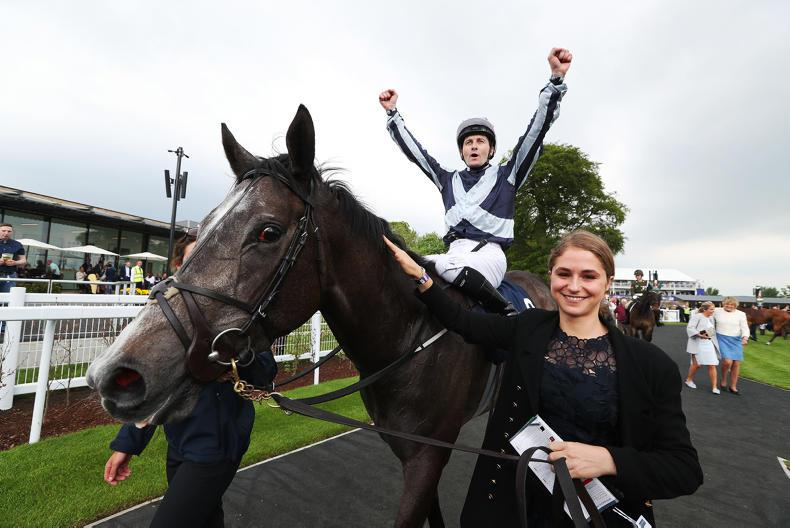 DONN McCLEAN: Connections focus on the journey of their horse of a lifetime