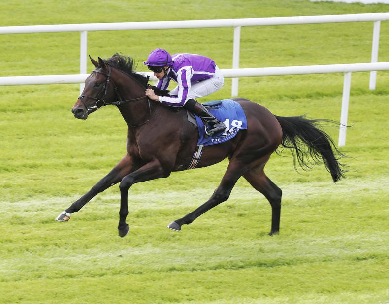 Ten Sovereigns heads four Middle Park possibles for Aidan O'Brien