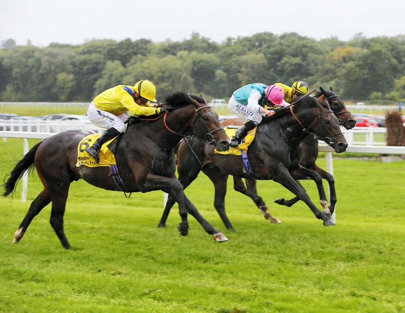 BRITAIN: Rascal rediscovers promising form
