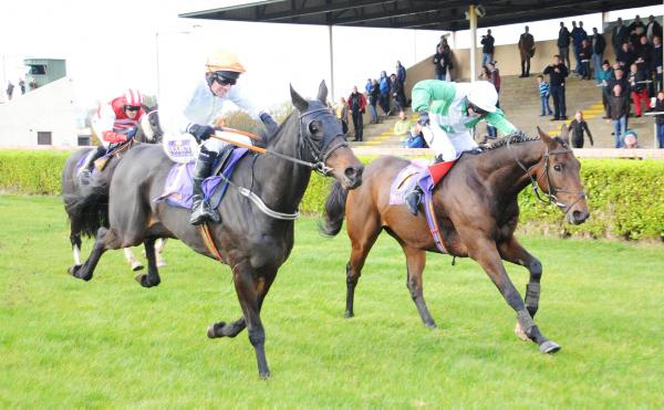 Casey prevails on Mitebeall Forluck