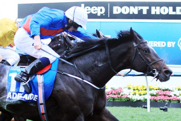 Adelaide's superb Cox Plate